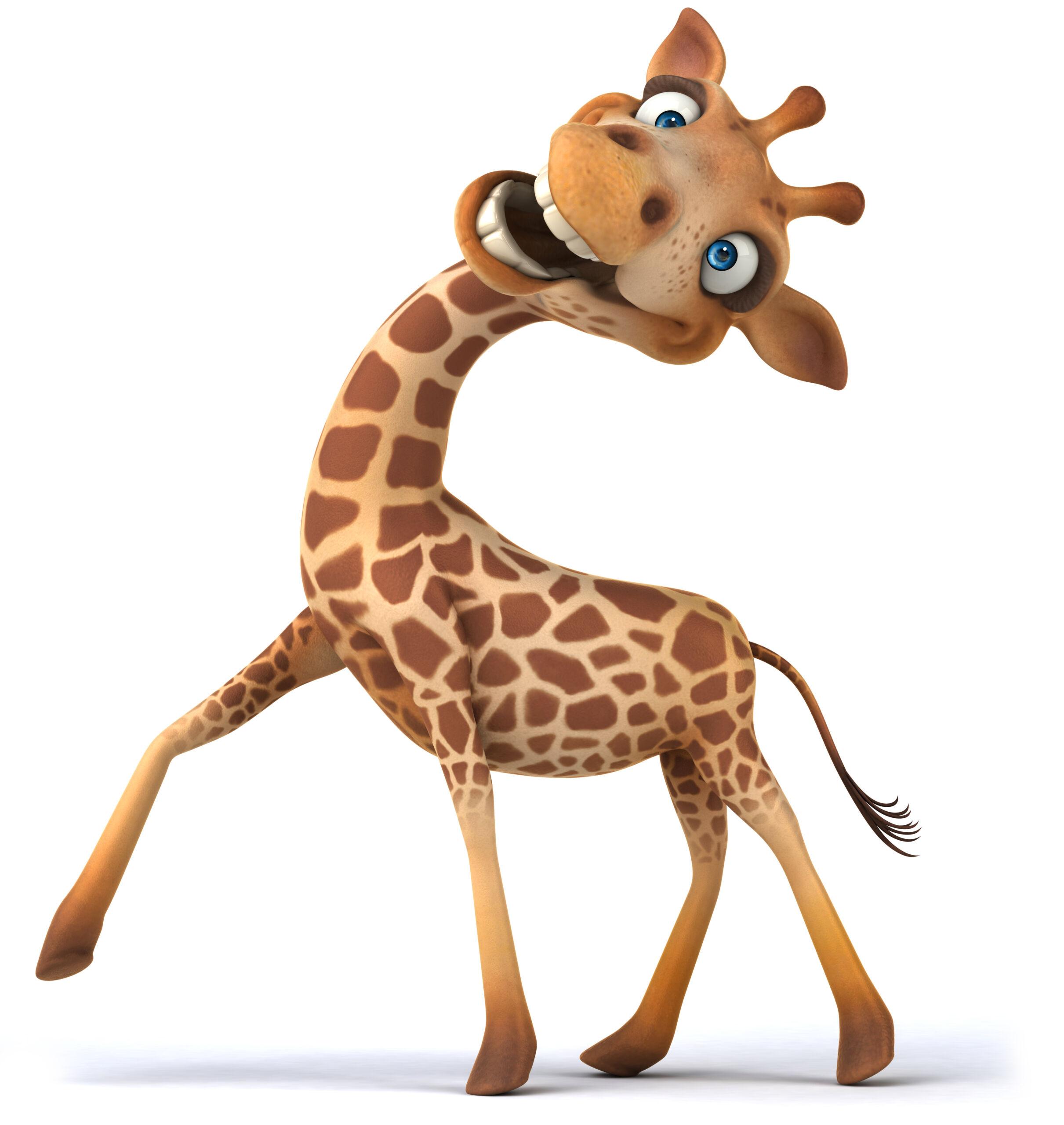 Giraffe VS Pinkafeld