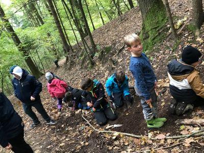 VS Pinkafeld 3c Waldtag
